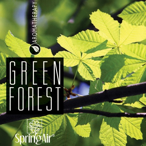 SpringAir Green Forest