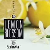 SpringAir Lemon Blossom