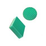 Evo sponge houbička zelená